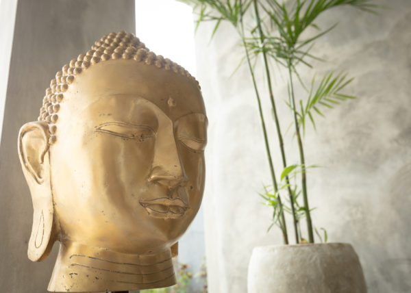 Villa ABSOLUTE – View of the Buddha in the living room